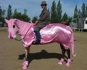 i_4092_stupid-horse-outfits-001