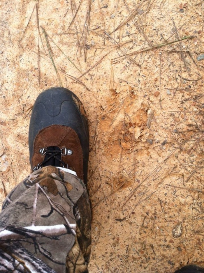 FYI, that's my size eleven boot next to a bear track. They're a thing here.